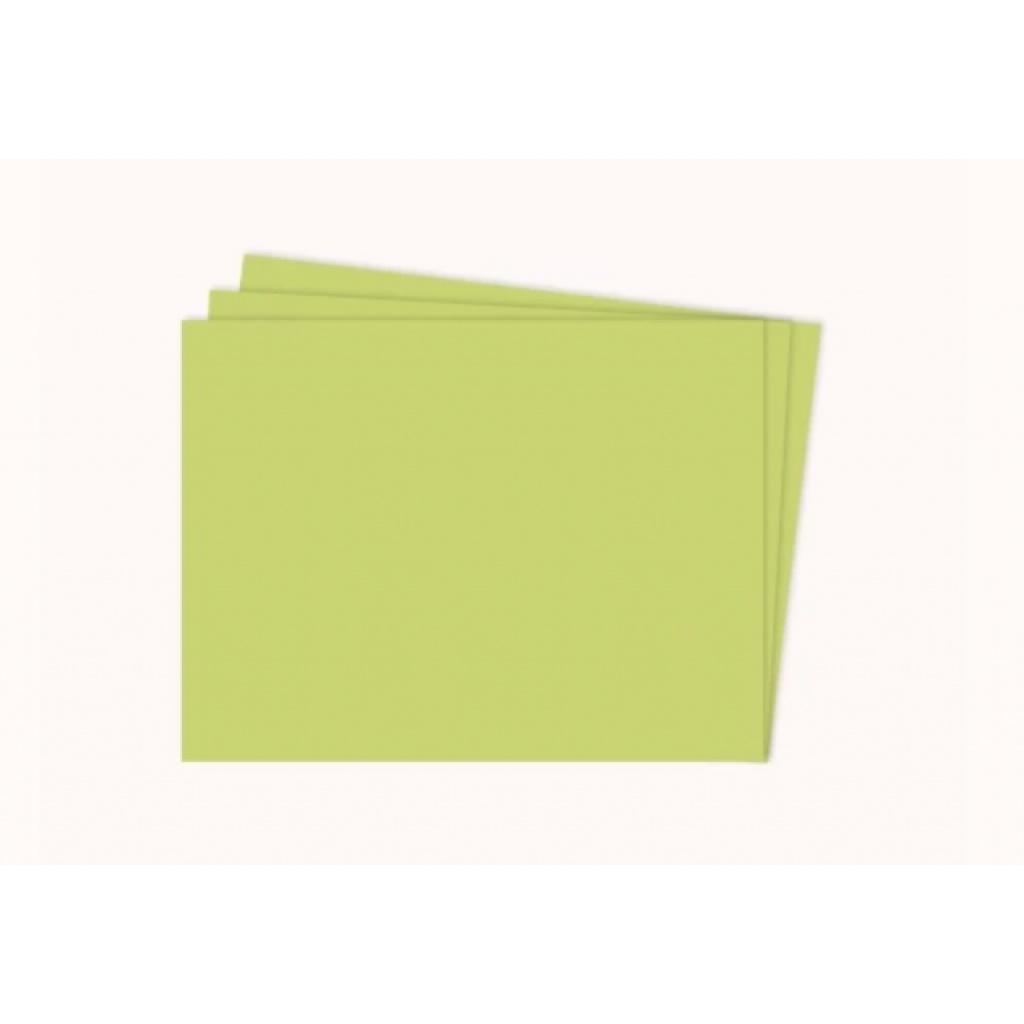 Cartulina Grande    Colores Fuertes    50x70 cm    x 10 hojas    Verde Otoñal
