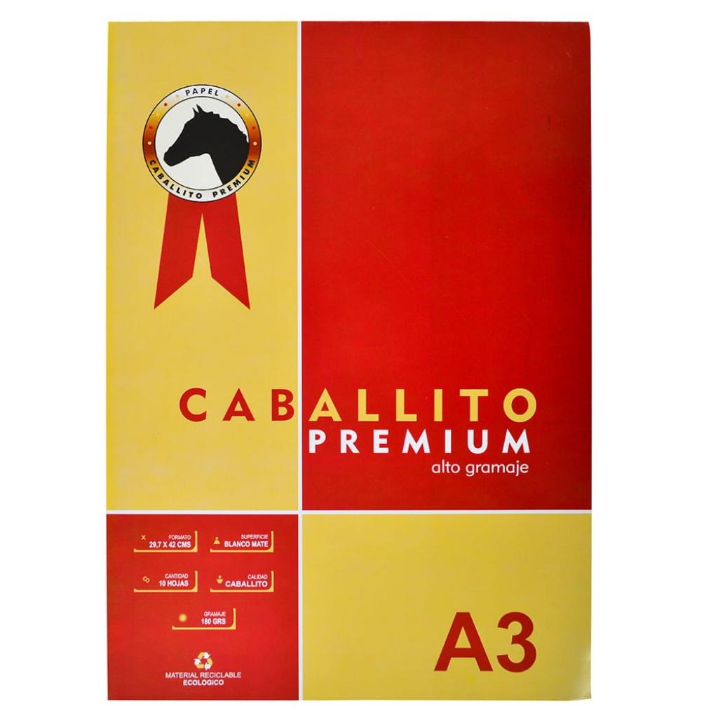 Block A3 Caballito Premium 10 Hojas